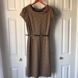 Classy! 🌆 Jones New York 🏙 Belted Knit Dress 14